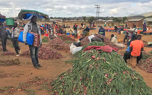 アフリカ マラウイ 野菜